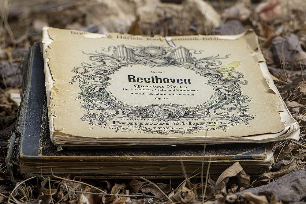 Beethoven vernieuwer van vele muzikale vorme