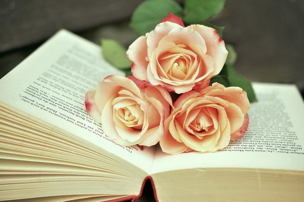 Boeken om blijvend te koesteren